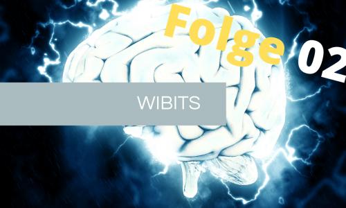 WIBIT – Fg. 2