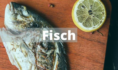 Rezepte – Fisch